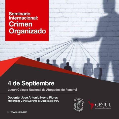 Seminario Internacional: Crimen Organizado