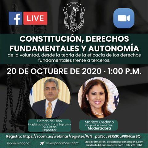 CONSTITUCIÓN, DERECHOS FUNDAMENTALES Y AUTONOMÍA de la voluntad, desde la teoría de la eficacia de los derechos fundamentales frente a terceros