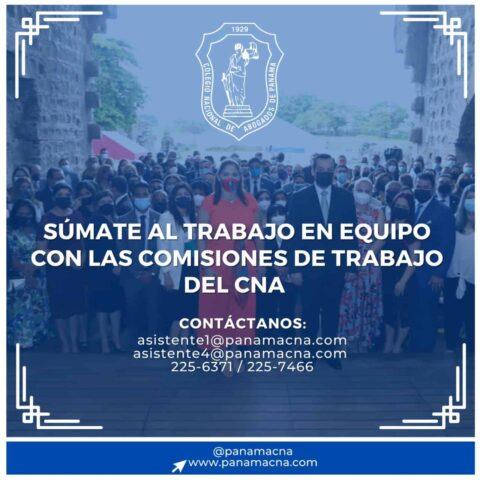 SUMATE AL TRABAJO EN EQUIPO CON LAS COMISIONES DE TRABAJO DEL CNA